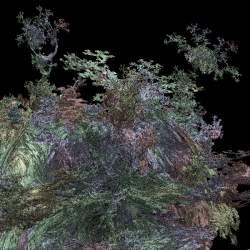 Asteroid Garden
