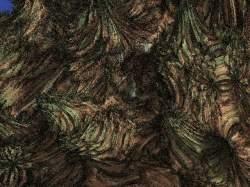 Chaos 9