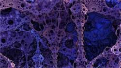 Purplecity