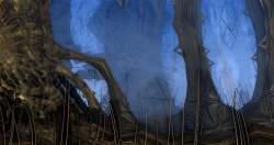 Secret forest 2