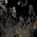 radiolaria objects