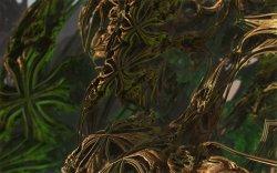 Tanglewood Jungle