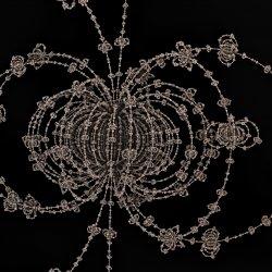 spyder web in space
