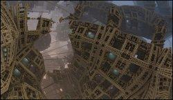 spider city