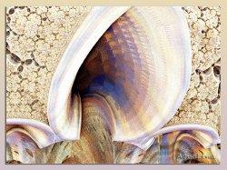 ear  fractal