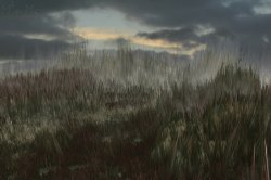 Grassy Knolls