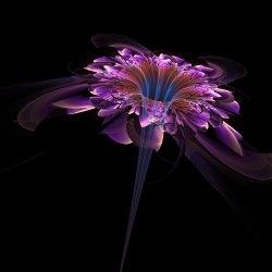 Coloured Glass Fractal Flower