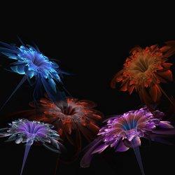 A Bouquet of Fractal Flowers