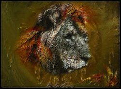 My Lion redone