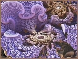 Crab Coral