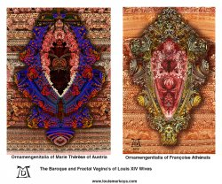 Ornamengenitalia - 2 versions