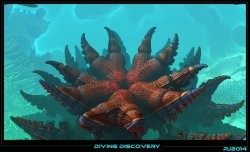 Diving discovery