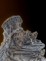 Pignose Rock