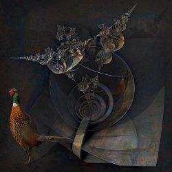 Tycho Brahes Cosmological Cranium