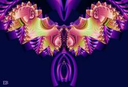 Pandora's Butterfly