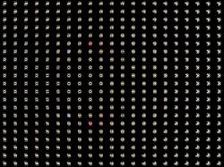 Magnet Fractal Type 1 Julia Set Map