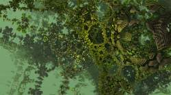 Algaebra