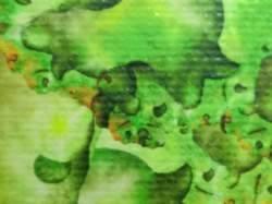 Macro image of a giclee canvas
