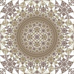 Hyperbolic Rep Tile 14
