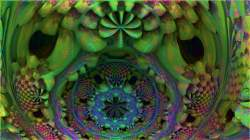 Math Flower