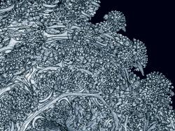 Twinbee's True3D degree 7 (zoom)