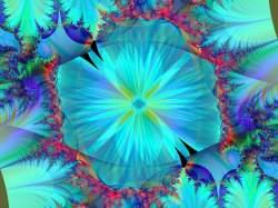 Blue Flower Revealed