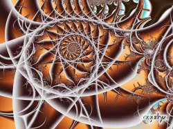 Serie espirales-b