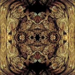 asin2atan Calculeidoscope