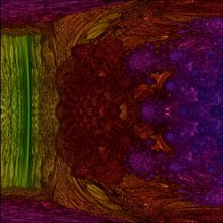 Mandelbulb regular closeup