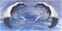 Cumulus Arborem