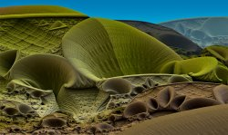Saturn hills