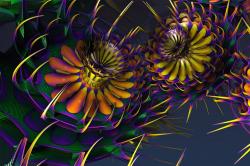 Fractalum Tricolour