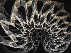 fractal meteor