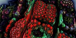 Reptile Textures