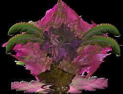 Rose in brass vase