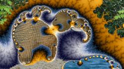 The elephants' oasis