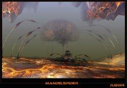 Mandel spider