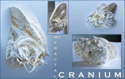 My Fractal Cranium