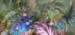 Inside an aquarium