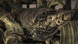 Anatomical petrification