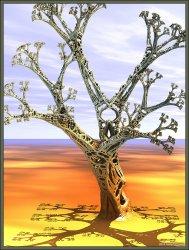 One Lonely Spongetree