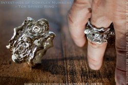 Intestines of Complex Numbers - Ten Spined Ring - 3D printed in Sterling Silver