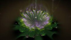 Eldrins flower