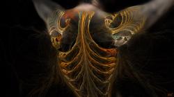Fractal Body