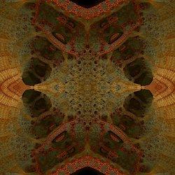 the nerve system of a fractal