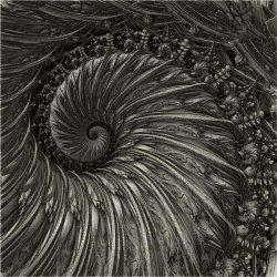 Mandelbrot Spiral In 3D