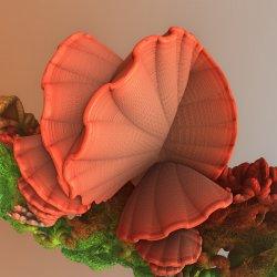 Tremella fractaliformis