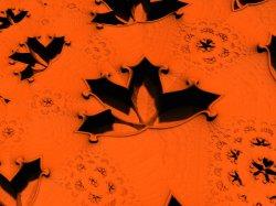 Orange Indentations