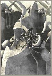 Stone Synapse