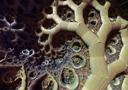 Dark spiral tree